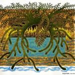 « Mangroves »